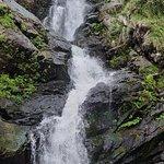 Iruppu Falls의 사진
