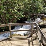 Foto de Crabtree Falls