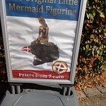 ภาพถ่ายของ The Little Mermaid (Den Lille Havfrue)