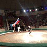 Kostroma State Circus Photo