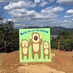 嵐山モンキーパークいわたやまの写真