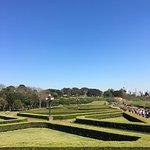 Jardim Botânico 4