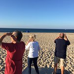 Foto Race Point Beach