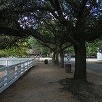 Bild från Colonial Williamsburg