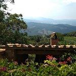 View from Poggio del Vento vineyard