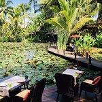ภาพถ่ายของ Manda de Laos