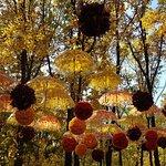 зонтики...)
