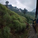 Bilde fra Nilgiri Mountain Railway