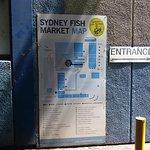 Photo of Sydney Fish Market