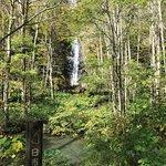 Photo of Oirase Mountain Stream
