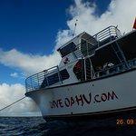 dive boat Anger Management