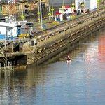 Foto de Canal do Panamá