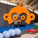 Ape Index - Ninja Warrior, Bouldering and Obstacle Course Racing Gym