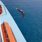صورة فوتوغرافية لـ Captain Marko Cruises