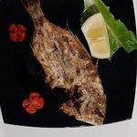 Bild från Shark Fish Restaurant