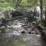 A Nice Little Brook