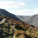 Billede af Wicklow Mountains National Park