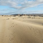 Rancho Guadalupe Dunes Preserve Foto