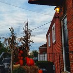 Fall Decorations, Great Pasta, dry grouper.