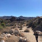 Foto de Agua Caliente Indian Canyons