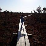 Photo of Kemeri National Park