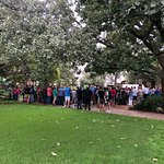 Visitors gather in the Alamo Garden to take in the live action!
