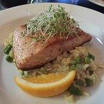 Very good salmon at Alice May