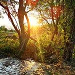 Landscape - Explorers Lions Rock Rapids Camp Photo