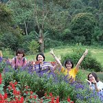 ภาพถ่ายของ Dalat Flower Park