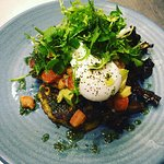 Corn fritters, avocado, mushrooms, tomato salsa, rocket & herb salad served with a poached egg!