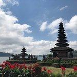 Foto de Saba Bali Trans - Day Tours