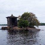 Fotografia de Mangrove Boat Tour