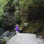 Grotto Falls Trail resmi