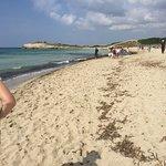 Фотография Playa de Son Bou