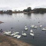 Photo de Southport Marine Lake