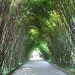 Wangjianglou Park Foto