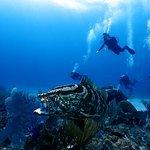 Cayman Brac Beach Resort Image