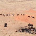 Steve & Richard Day Tours & Safaris照片