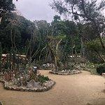 Foto de Jardim Botânico