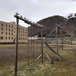 صورة فوتوغرافية لـ Svalbard Booking
