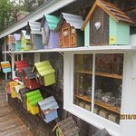 bird houses for sale