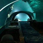Фотография 5.8 Undersea Restaurant