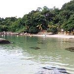 Photo de Praia Ilha do Pelado