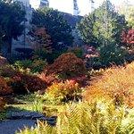 Sizergh garden