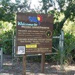 Weedon Island Preserveの写真