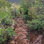 Mount Christoffel Foto
