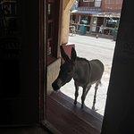 Φωτογραφία: Oatman Ghost Town