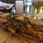 Lazy Lobsterの写真