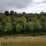 Foto de Egglestone Abbey