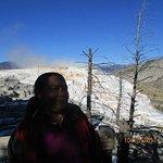 Foto de Yellowstone Tour Guides - Day Trips